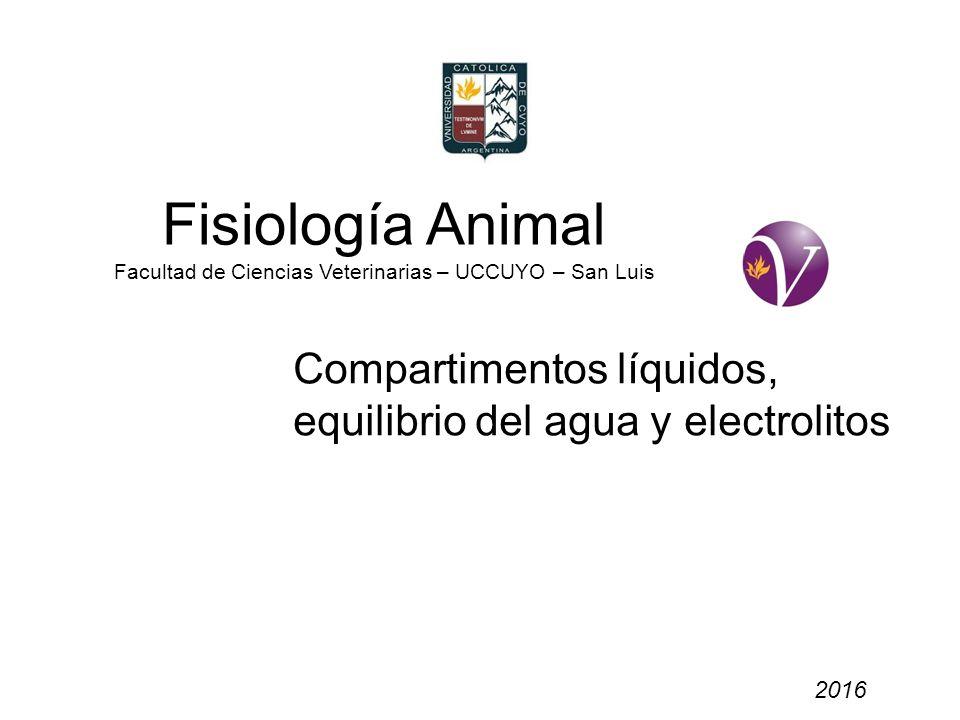 Fisiología Animal Facultad de Ciencias Veterinarias – UCCUYO – San Luis 2016 Compartimentos líquidos, equilibrio del agua y electrolitos