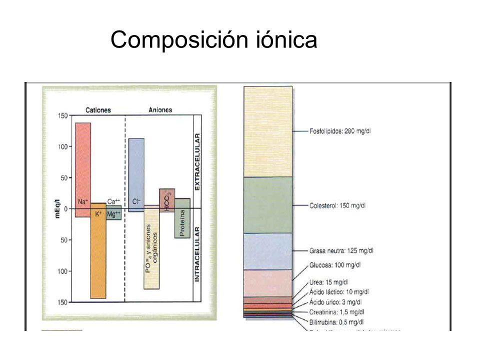 Composición iónica