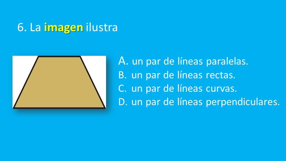 imagen 6. La imagen ilustra A. un par de líneas paralelas.