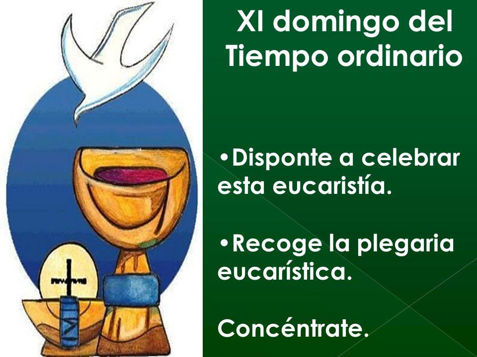 XI domingo del Tiempo ordinario Disponte a celebrar esta eucaristía.