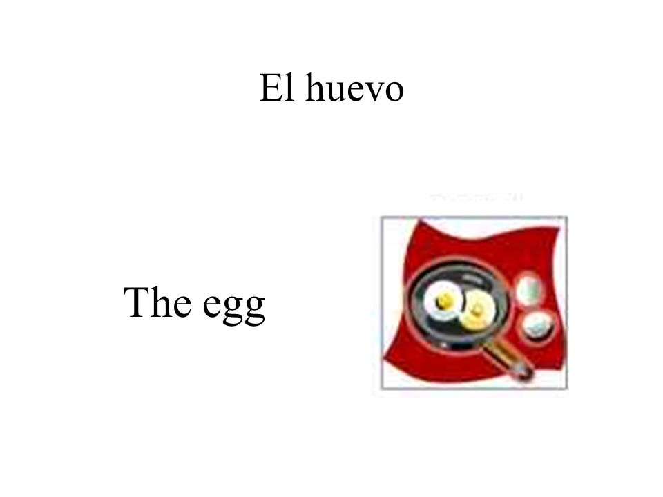 El huevo The egg