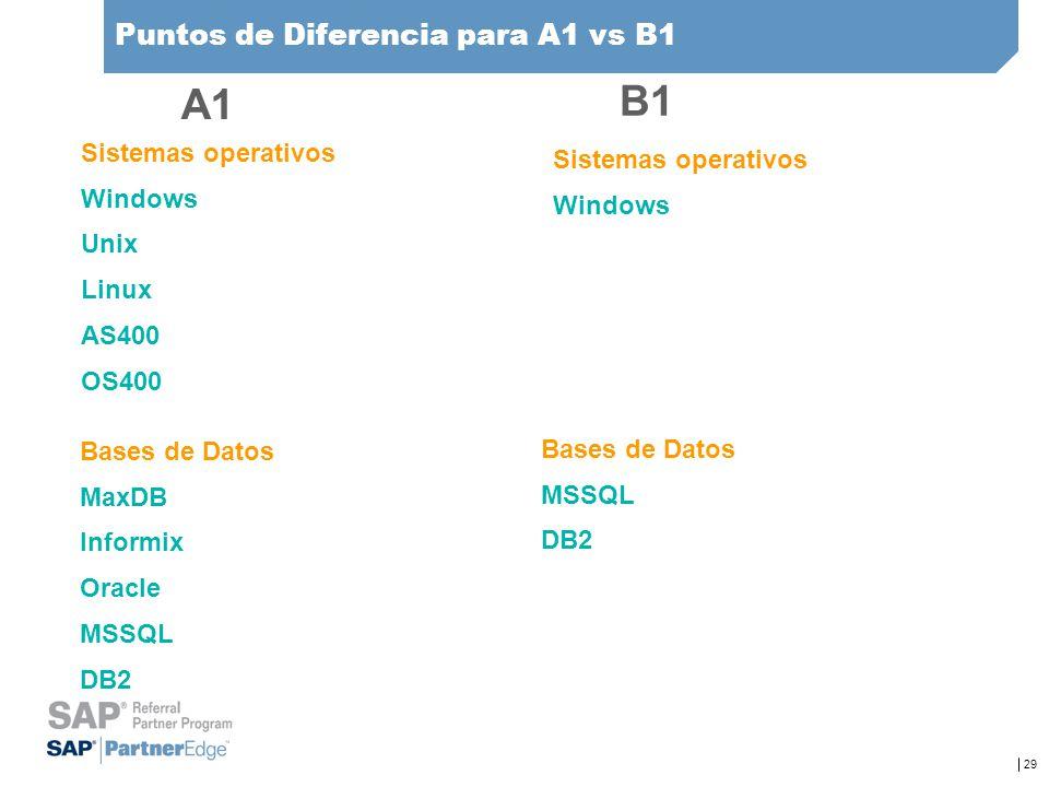 29 Puntos de Diferencia para A1 vs B1 Sistemas operativos Windows Unix Linux AS400 OS400 Sistemas operativos Windows Bases de Datos MaxDB Informix Ora