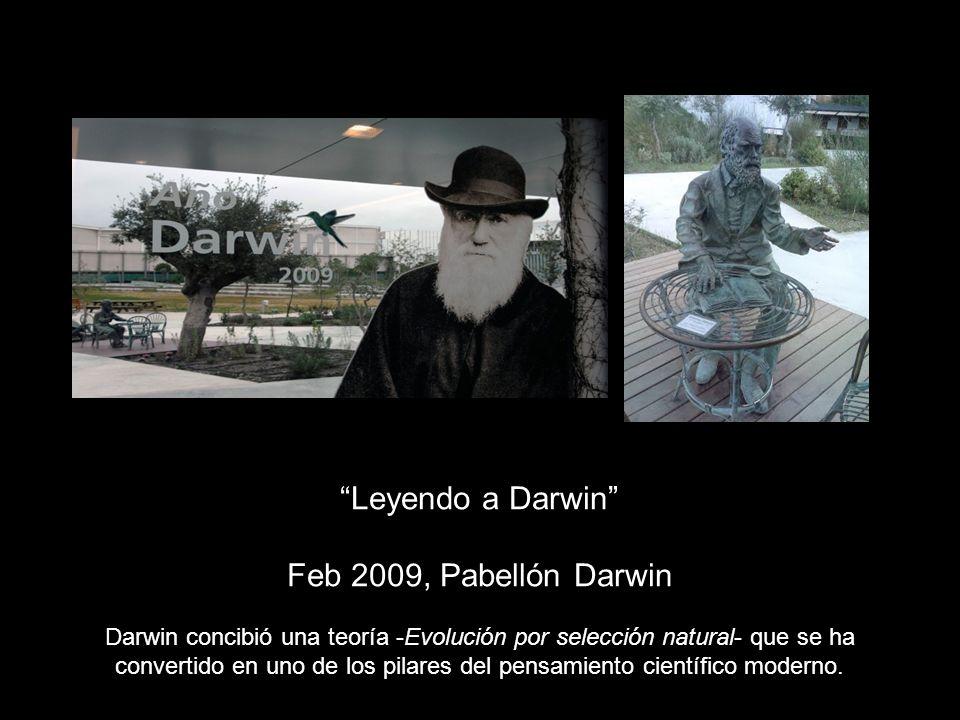 Leyendo a Darwin Feb 2009, Pabellón Darwin Darwin concibió una teoría -Evolución por selección natural- que se ha convertido en uno de los pilares del pensamiento científico moderno.