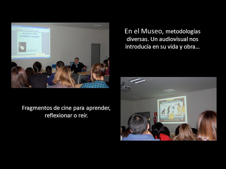 En el Museo, metodologías diversas.