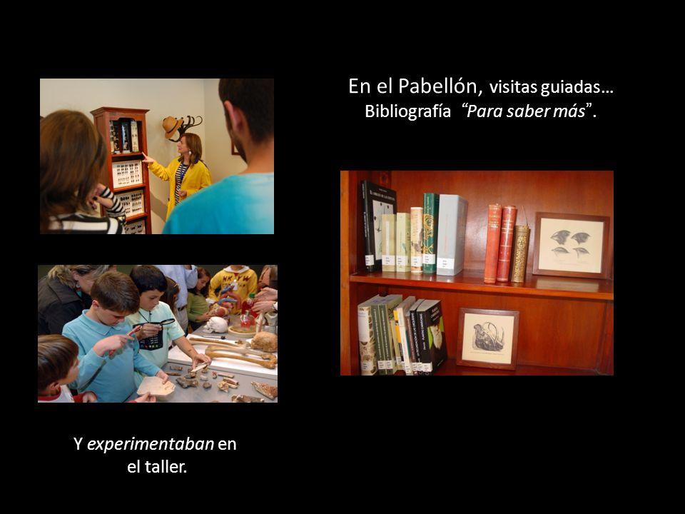 Y experimentaban en el taller. En el Pabellón, visitas guiadas… Bibliografía Para saber más.