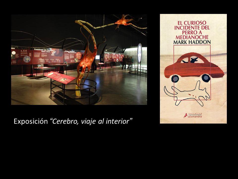 Exposición Cerebro, viaje al interior