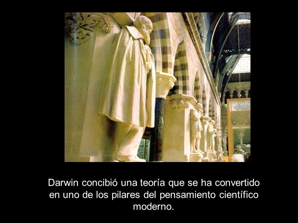 Darwin concibió una teoría que se ha convertido en uno de los pilares del pensamiento científico moderno.