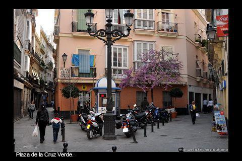 Avenida Duque de Nájera.