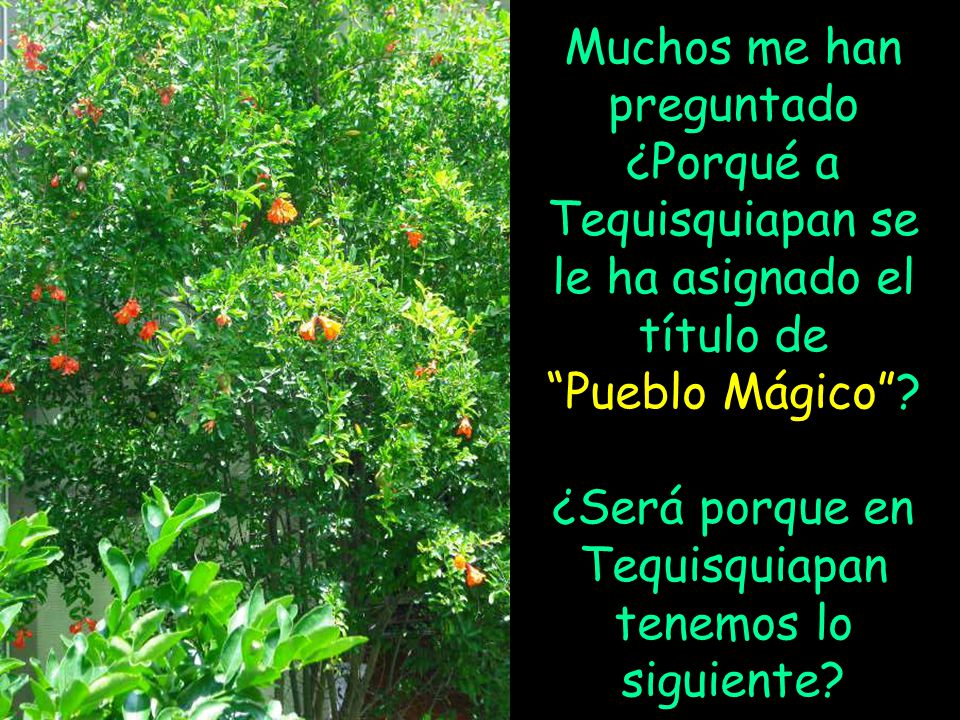 Muchos me han preguntado ¿Porqué a Tequisquiapan se le ha asignado el título de Pueblo Mágico? ¿Será porque en Tequisquiapan tenemos lo siguiente?