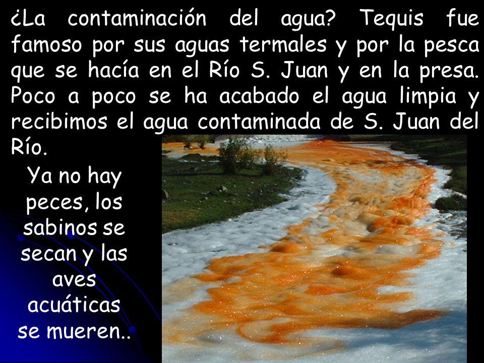 ¿La contaminación del agua? Tequis fue famoso por sus aguas termales y por la pesca que se hacía en el Río S. Juan y en la presa. Poco a poco se ha ac