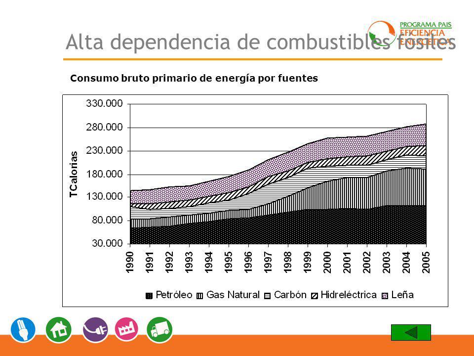 Alta dependencia de combustibles fósiles Consumo bruto primario de energía por fuentes