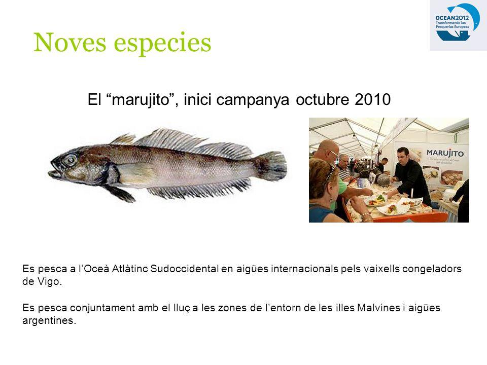 Noves especies El marujito, inici campanya octubre 2010 Es pesca a lOceà Atlàtinc Sudoccidental en aigües internacionals pels vaixells congeladors de Vigo.