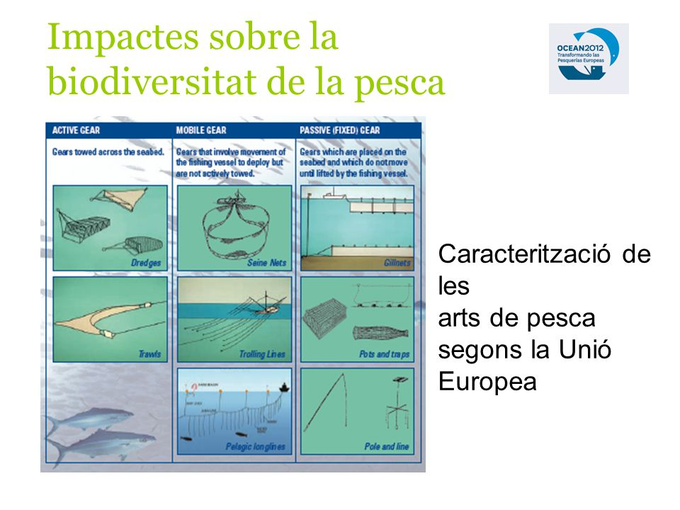 Impactes sobre la biodiversitat de la pesca Caracterització de les arts de pesca segons la Unió Europea