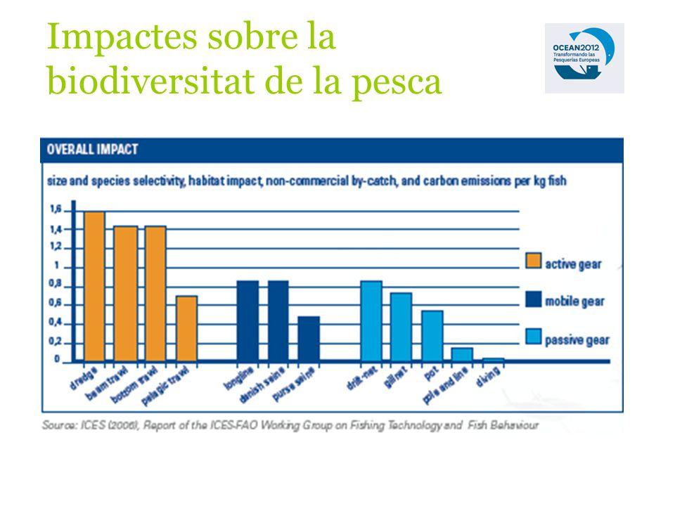 Impactes sobre la biodiversitat de la pesca