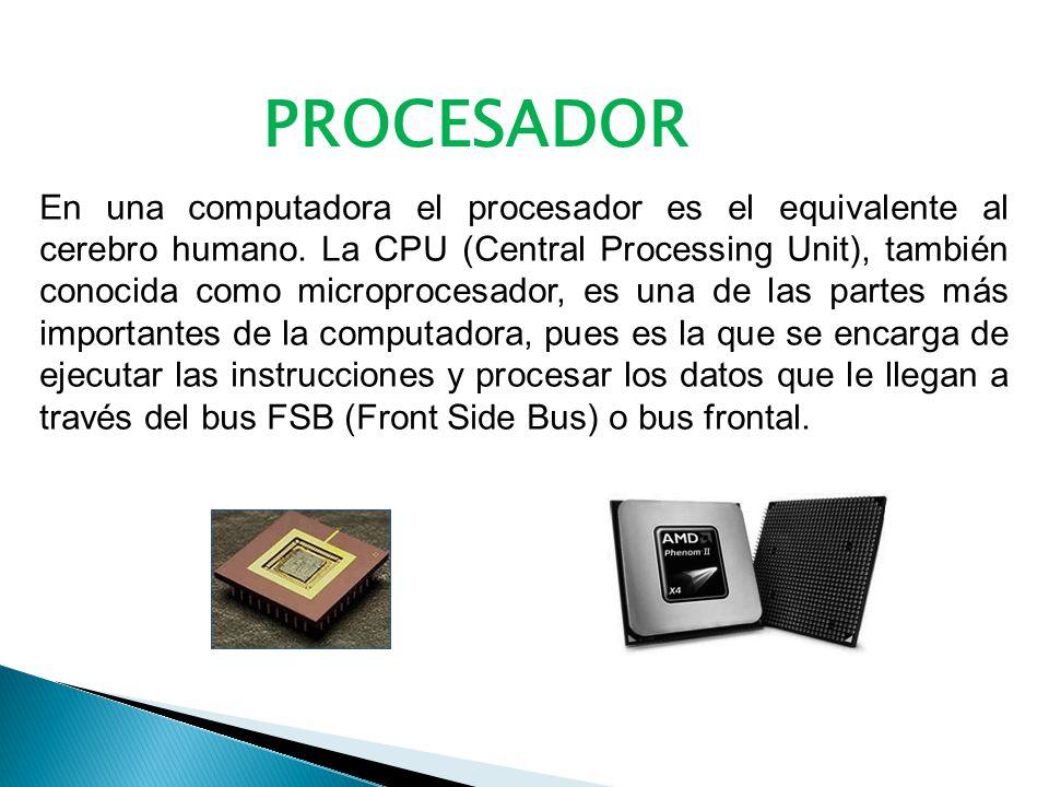 En una computadora el procesador es el equivalente al cerebro humano.