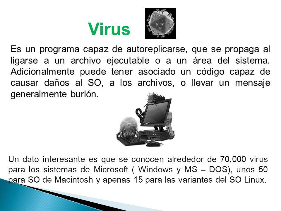 Virus Es un programa capaz de autoreplicarse, que se propaga al ligarse a un archivo ejecutable o a un área del sistema.