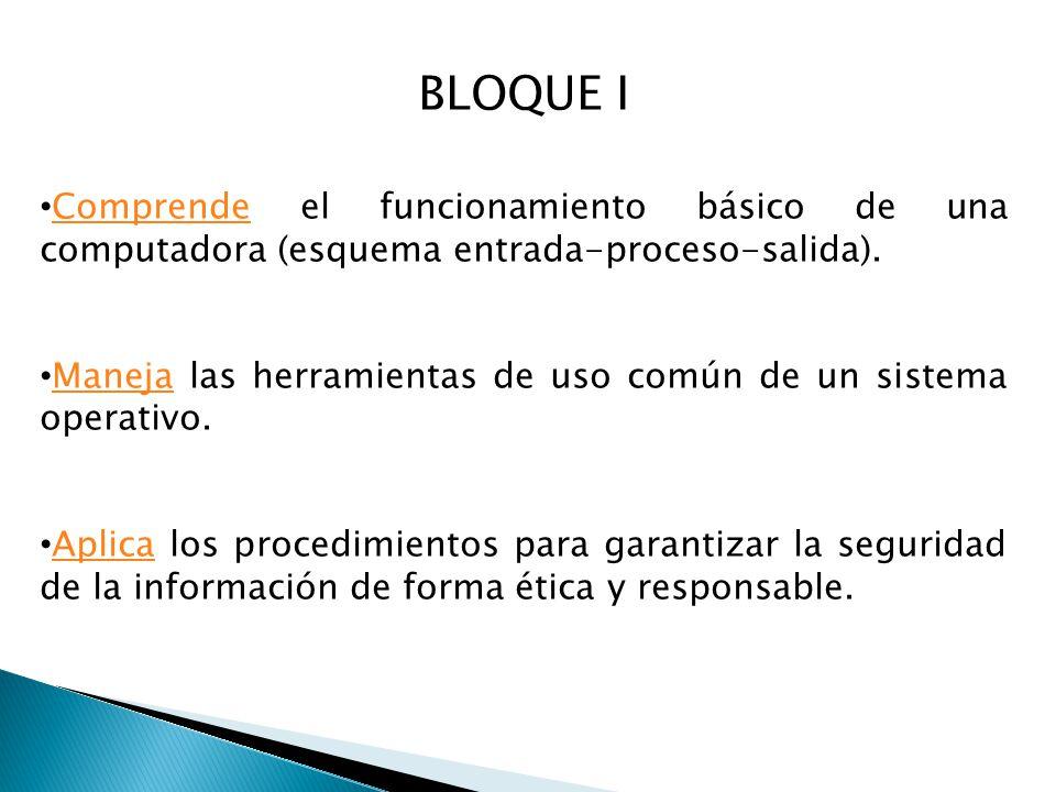 BLOQUE I Comprende el funcionamiento básico de una computadora (esquema entrada-proceso-salida).