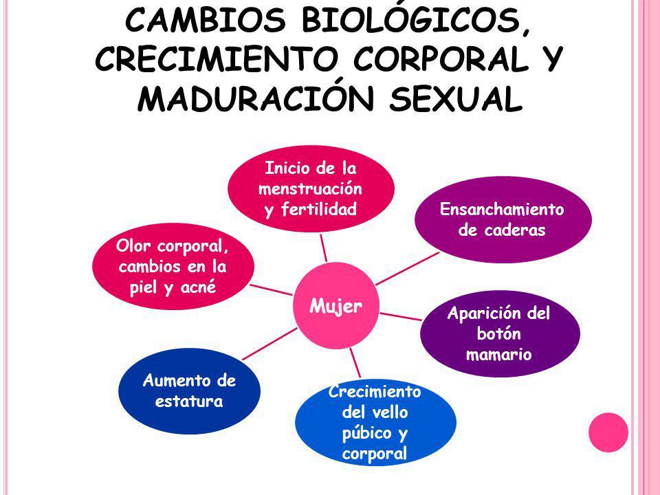 CAMBIOS BIOLÓGICOS, CRECIMIENTO CORPORAL Y MADURACIÓN SEXUAL Mujer Inicio de la menstruación y fertilidad Ensanchamiento de caderas Aparición del botó