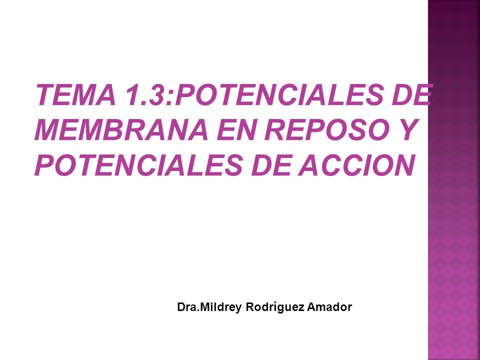 TEMA 1.3:POTENCIALES DE MEMBRANA EN REPOSO Y POTENCIALES DE ACCION Dra.Mildrey Rodríguez Amador