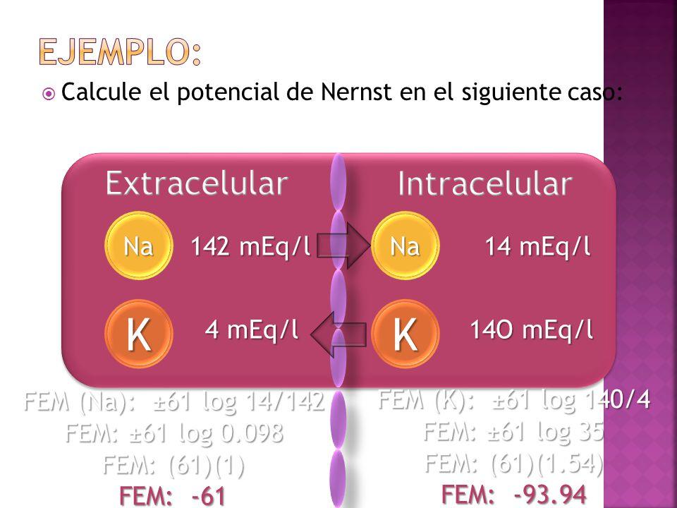 Calcule el potencial de Nernst en el siguiente caso: K Na 142 mEq/l 4 mEq/l Na K 14O mEq/l 14 mEq/l FEM (Na): ±61 log 14/142 FEM: ±61 log 0.098 FEM: (