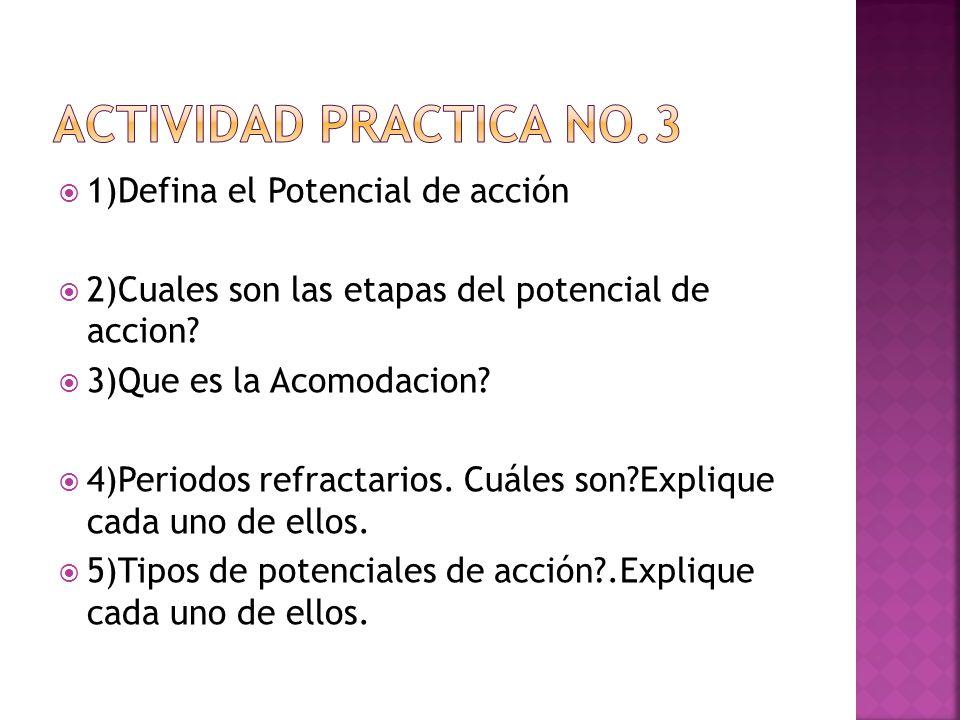 1)Defina el Potencial de acción 2)Cuales son las etapas del potencial de accion? 3)Que es la Acomodacion? 4)Periodos refractarios. Cuáles son?Explique
