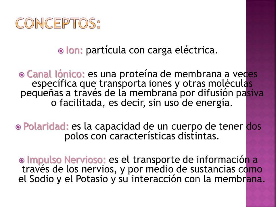 Ion: Ion: partícula con carga eléctrica. Canal Iónico: Canal Iónico: es una proteína de membrana a veces específica que transporta iones y otras moléc