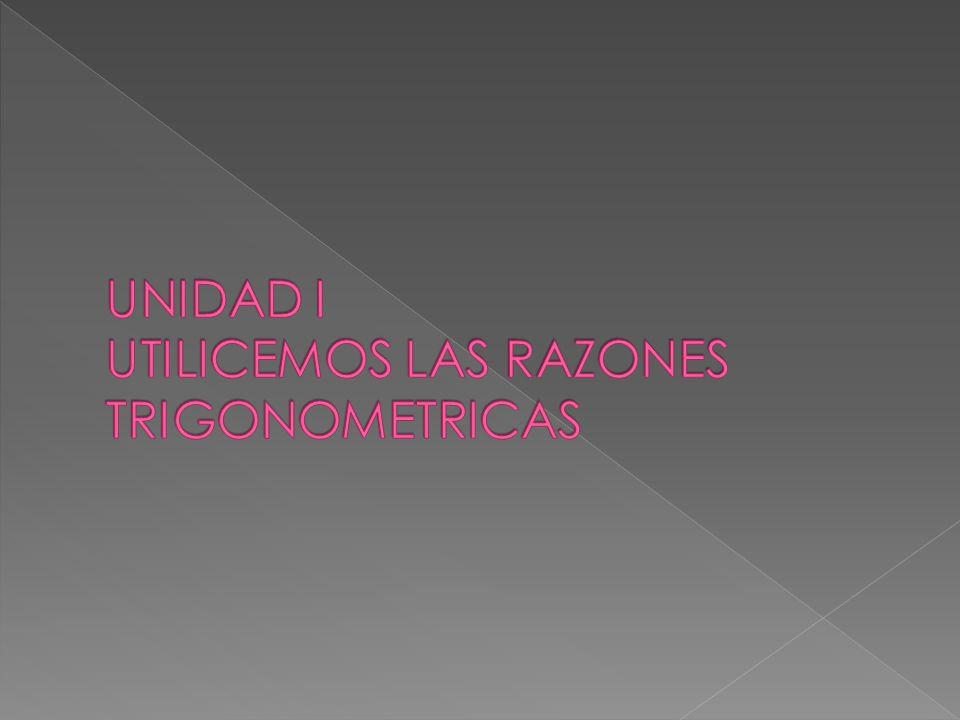 RAZONES TRIGONOMÉTRICAS DE ANGULOS AGUDOS CATETO OPUESTO A CATETO ADYACENTE A HIPOTENUSA SENOCOSENO TANGENTECOTANGENTE SECANTECOSECANTE