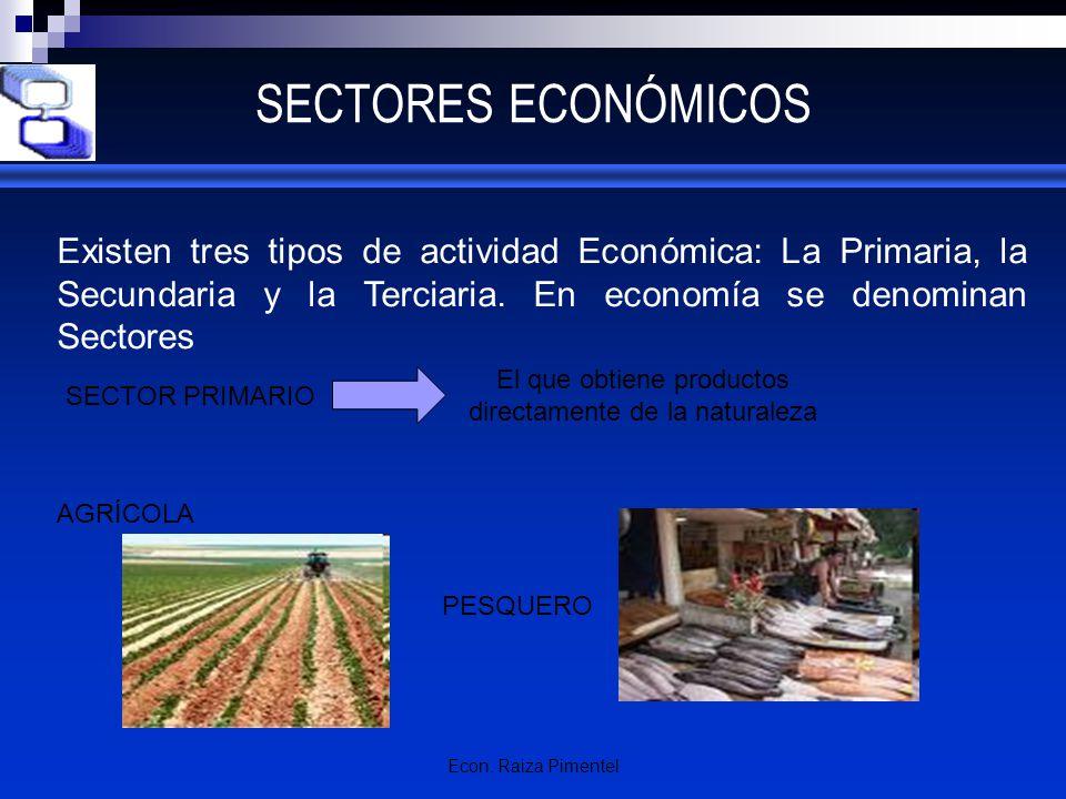 Econ. Raiza Pimentel SECTORES ECONÓMICOS Existen tres tipos de actividad Económica: La Primaria, la Secundaria y la Terciaria. En economía se denomina