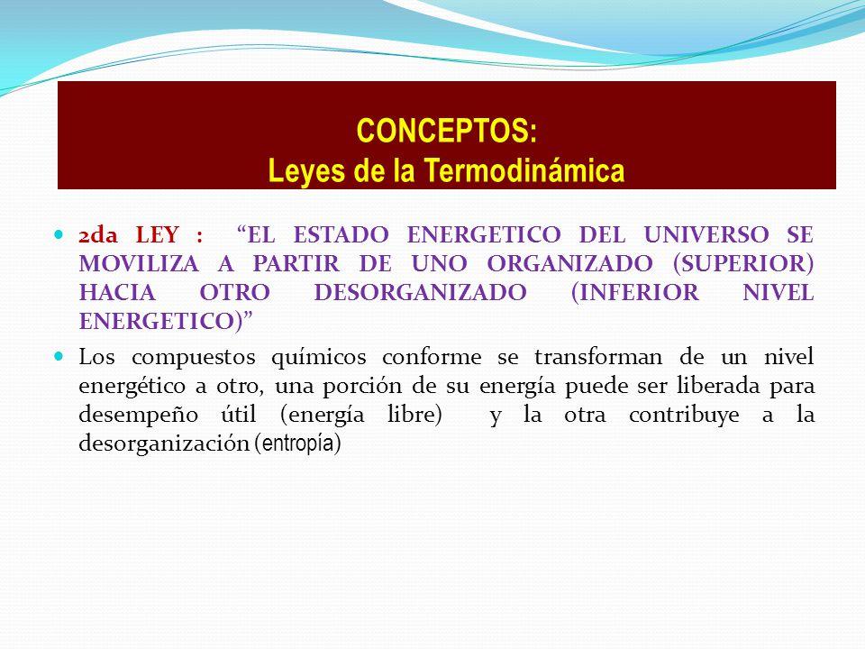 2da LEY : EL ESTADO ENERGETICO DEL UNIVERSO SE MOVILIZA A PARTIR DE UNO ORGANIZADO (SUPERIOR) HACIA OTRO DESORGANIZADO (INFERIOR NIVEL ENERGETICO) Los
