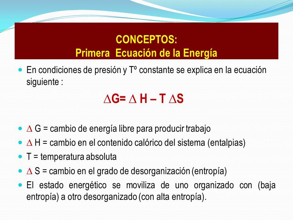 En condiciones de presión y Tº constante se explica en la ecuación siguiente : G= H – T S G = cambio de energía libre para producir trabajo H = cambio