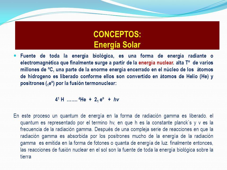 Fuente de toda la energía biológica, es una forma de energía radiante o electromagnética que finalmente surge a partir de la energía nuclear. alta Tº