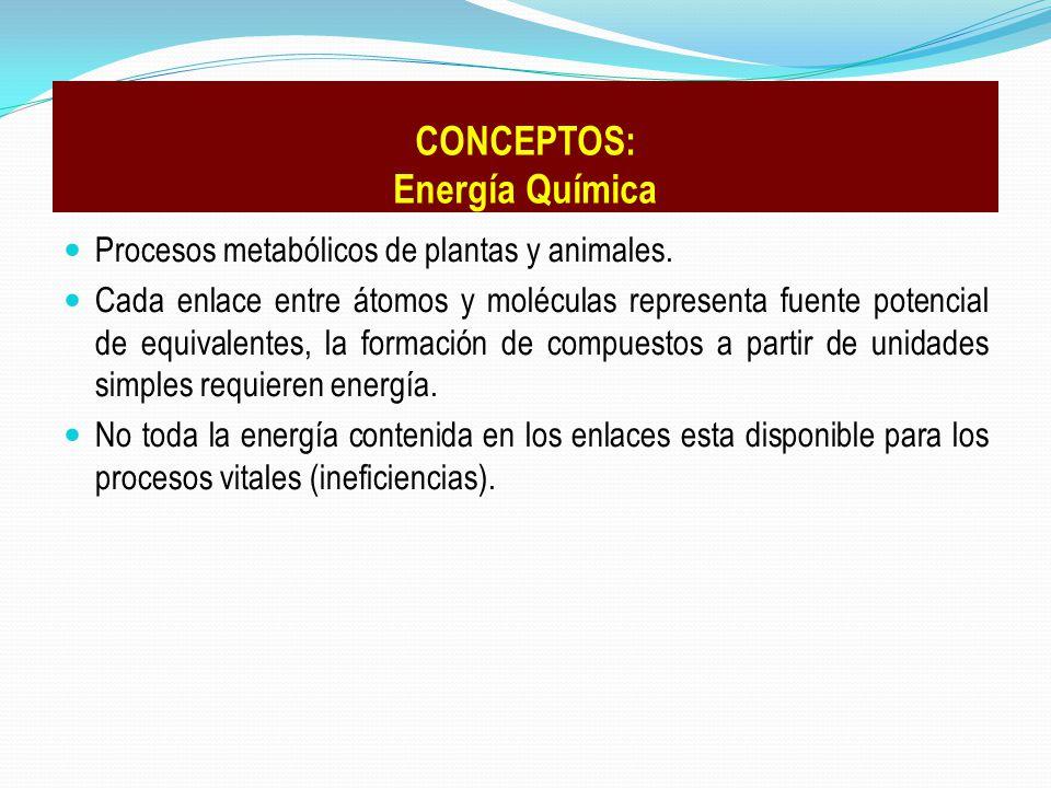 Procesos metabólicos de plantas y animales. Cada enlace entre átomos y moléculas representa fuente potencial de equivalentes, la formación de compuest