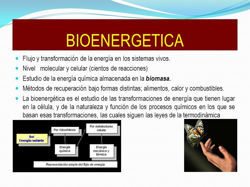 BIOENERGETICA Flujo y transformación de la energía en los sistemas vivos. Nivel molecular y celular (cientos de reacciones) Estudio de la energía quím