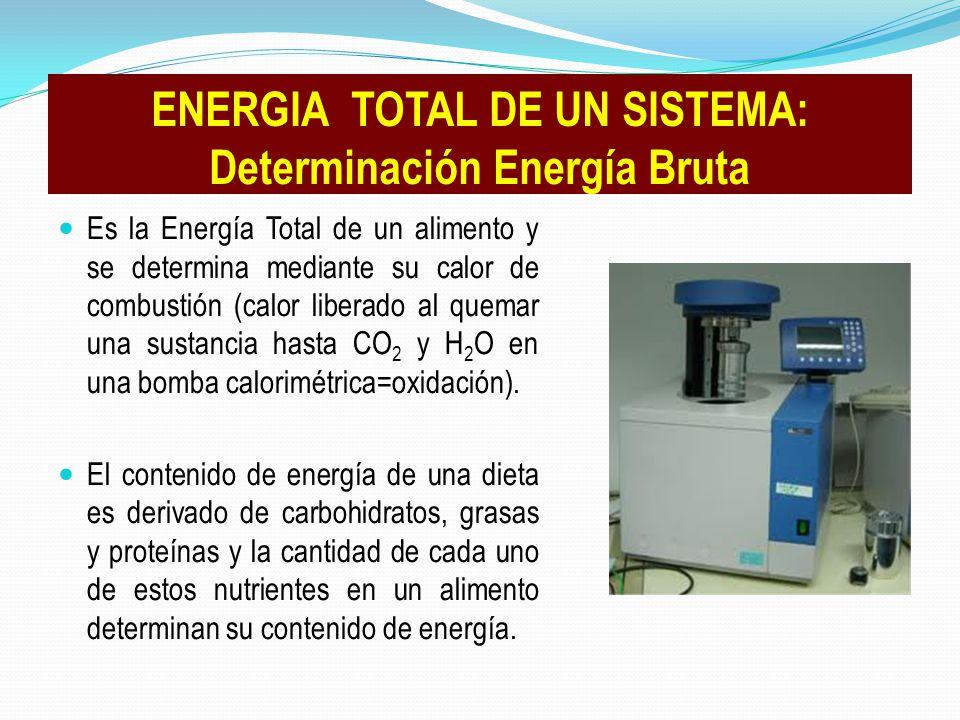 Es la Energía Total de un alimento y se determina mediante su calor de combustión (calor liberado al quemar una sustancia hasta CO 2 y H 2 O en una bo