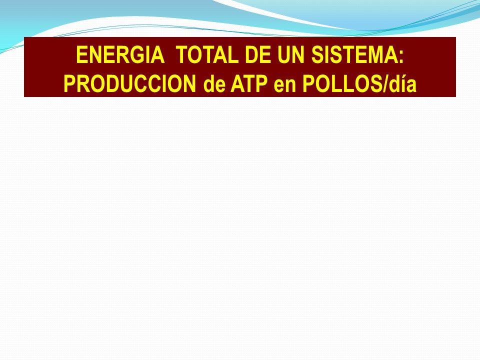 ENERGIA TOTAL DE UN SISTEMA: PRODUCCION de ATP en POLLOS/día