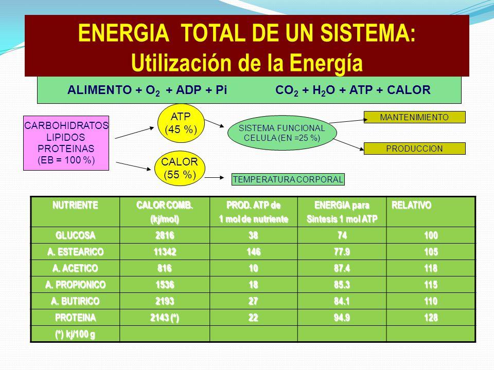 NUTRIENTE CALOR COMB. (kj/mol) PROD. ATP de 1 mol de nutriente ENERGIA para Sintesis 1 mol ATP RELATIVO GLUCOSA28163874100 A. ESTEARICO 1134214677.910