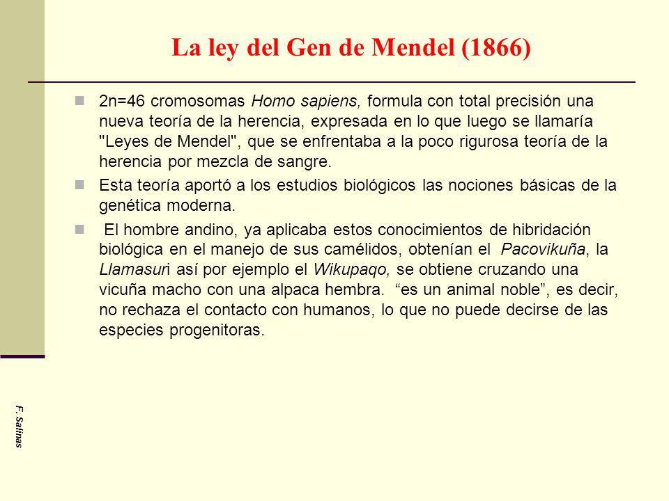 La ley del Gen de Mendel (1866) 2n=46 cromosomas Homo sapiens, formula con total precisión una nueva teoría de la herencia, expresada en lo que luego