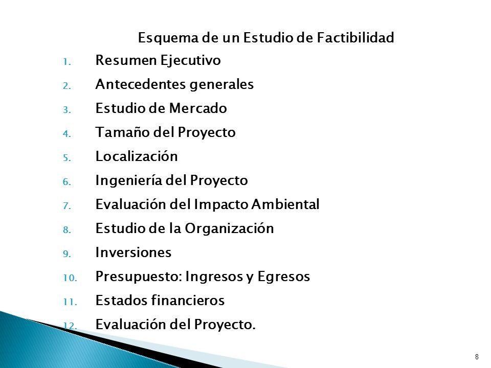 Esquema de un Estudio de Factibilidad 1.Resumen Ejecutivo 2.