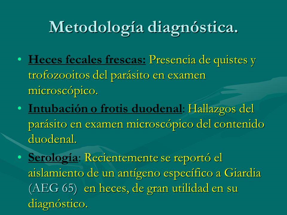Metodología diagnóstica. Presencia de quistes y trofozooitos del parásito en examen microscópico.Heces fecales frescas: Presencia de quistes y trofozo