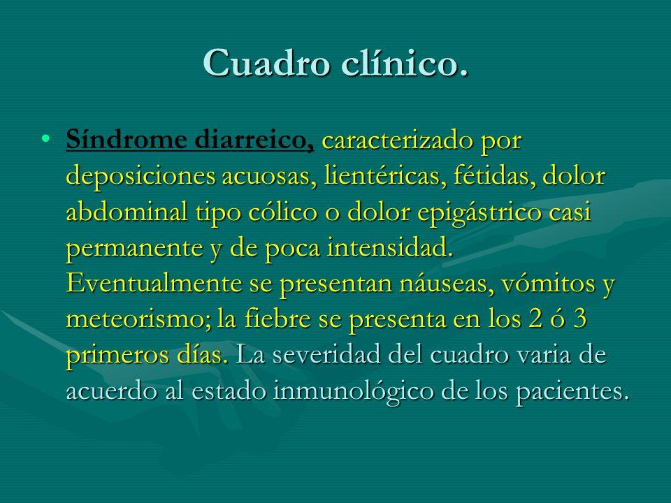 Cuadro clínico. caracterizado por deposiciones acuosas, lientéricas, fétidas, dolor abdominal tipo cólico o dolor epigástrico casi permanente y de poc