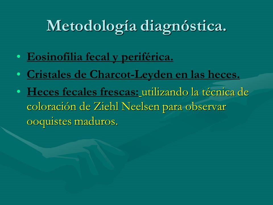 Metodología diagnóstica. Eosinofilia fecal y periférica. Cristales de Charcot-Leyden en las heces. utilizando la técnica de coloración de Ziehl Neelse