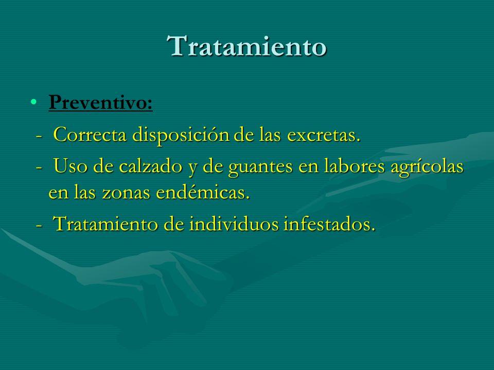 Tratamiento Preventivo: - Correcta disposición de las excretas. - Correcta disposición de las excretas. - Uso de calzado y de guantes en labores agríc