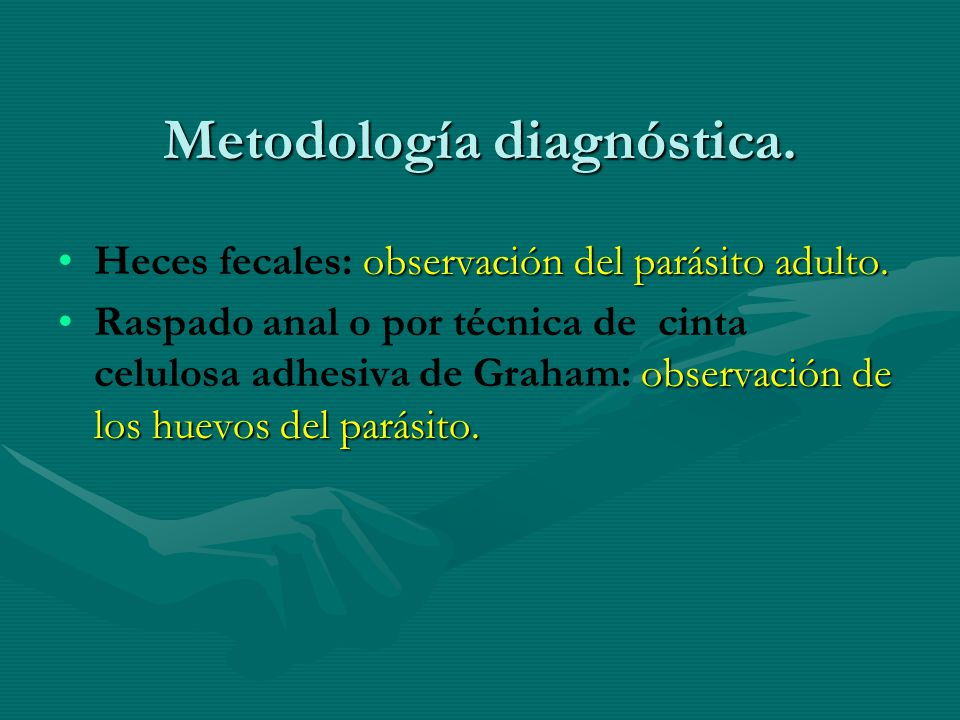 Metodología diagnóstica. observación del parásito adulto.Heces fecales: observación del parásito adulto. observación de los huevos del parásito.Raspad