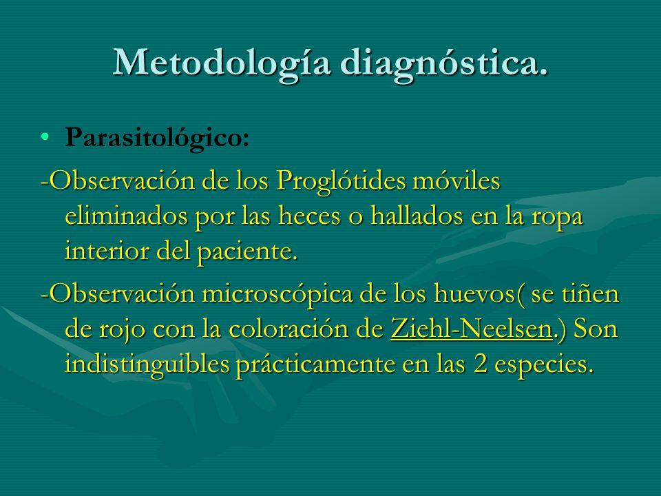 Metodología diagnóstica. Parasitológico: -Observación de los Proglótides móviles eliminados por las heces o hallados en la ropa interior del paciente.