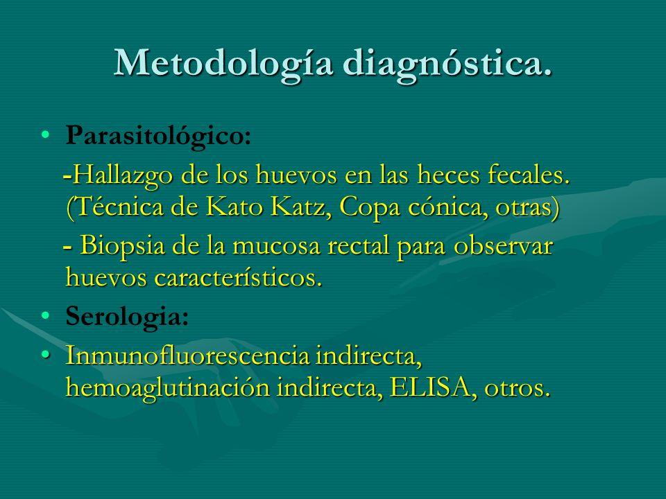 Metodología diagnóstica. Parasitológico: -Hallazgo de los huevos en las heces fecales. (Técnica de Kato Katz, Copa cónica, otras) - Biopsia de la muco