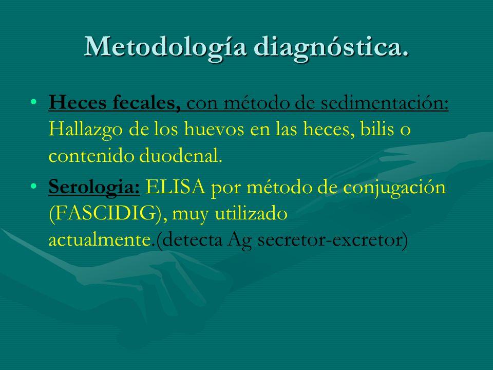 Metodología diagnóstica. Heces fecales, con método de sedimentación: Hallazgo de los huevos en las heces, bilis o contenido duodenal. Serologia: ELISA