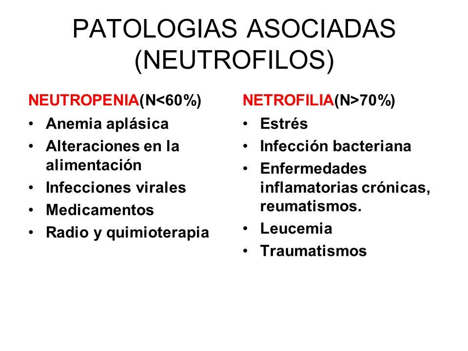 PATOLOGIAS ASOCIADAS (NEUTROFILOS) NEUTROPENIA(N<60%) Anemia aplásica Alteraciones en la alimentación Infecciones virales Medicamentos Radio y quimioterapia NETROFILIA(N>70%) Estrés Infección bacteriana Enfermedades inflamatorias crónicas, reumatismos.