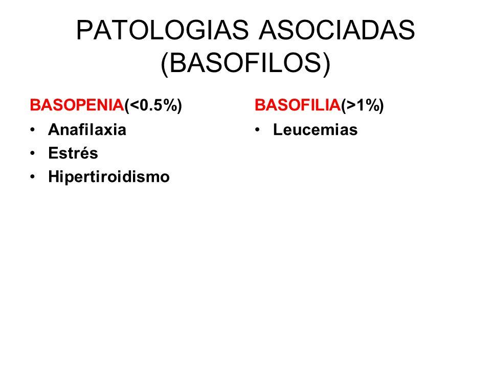 PATOLOGIAS ASOCIADAS (BASOFILOS) BASOPENIA(<0.5%) Anafilaxia Estrés Hipertiroidismo BASOFILIA(>1%) Leucemias