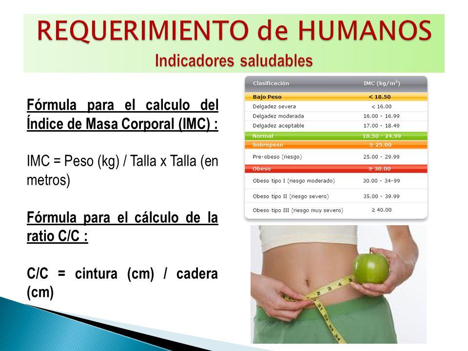 Fórmula para el calculo del Índice de Masa Corporal (IMC) : IMC = Peso (kg) / Talla x Talla (en metros) Fórmula para el cálculo de la ratio C/C : C/C = cintura (cm) / cadera (cm)