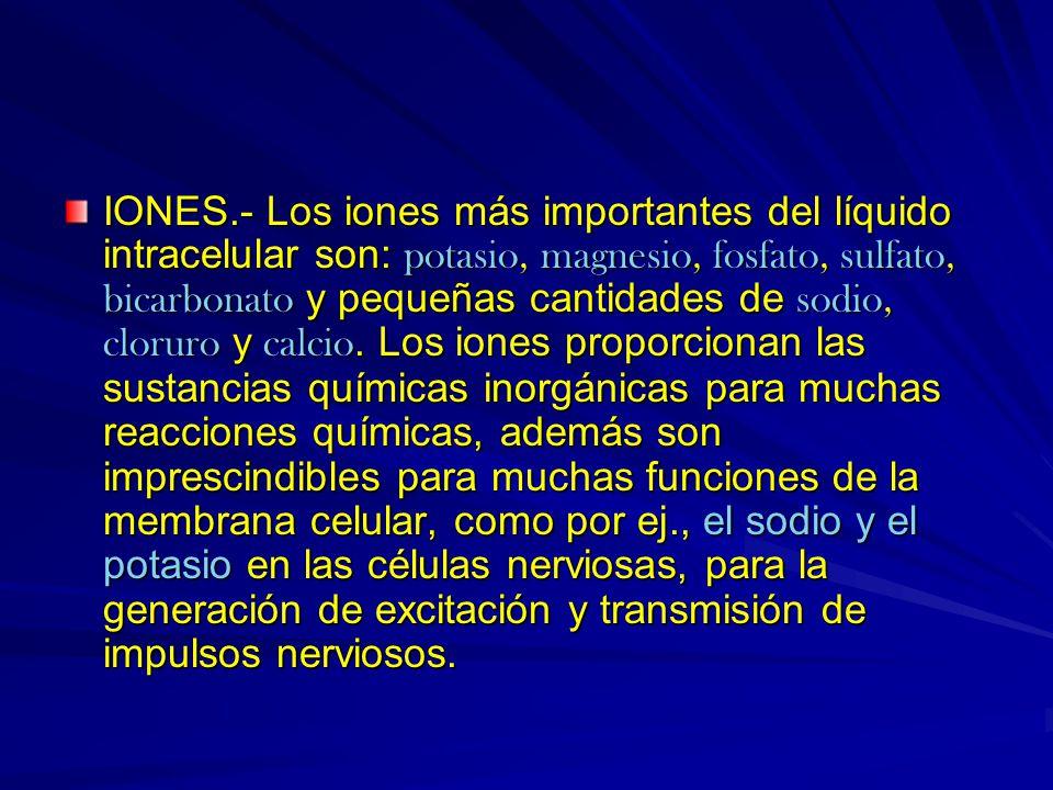 IONES.- Los iones más importantes del líquido intracelular son: potasio, magnesio, fosfato, sulfato, bicarbonato y pequeñas cantidades de sodio, cloru